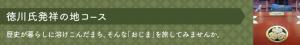 徳川発祥の地コース