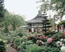 大慶寺 画像